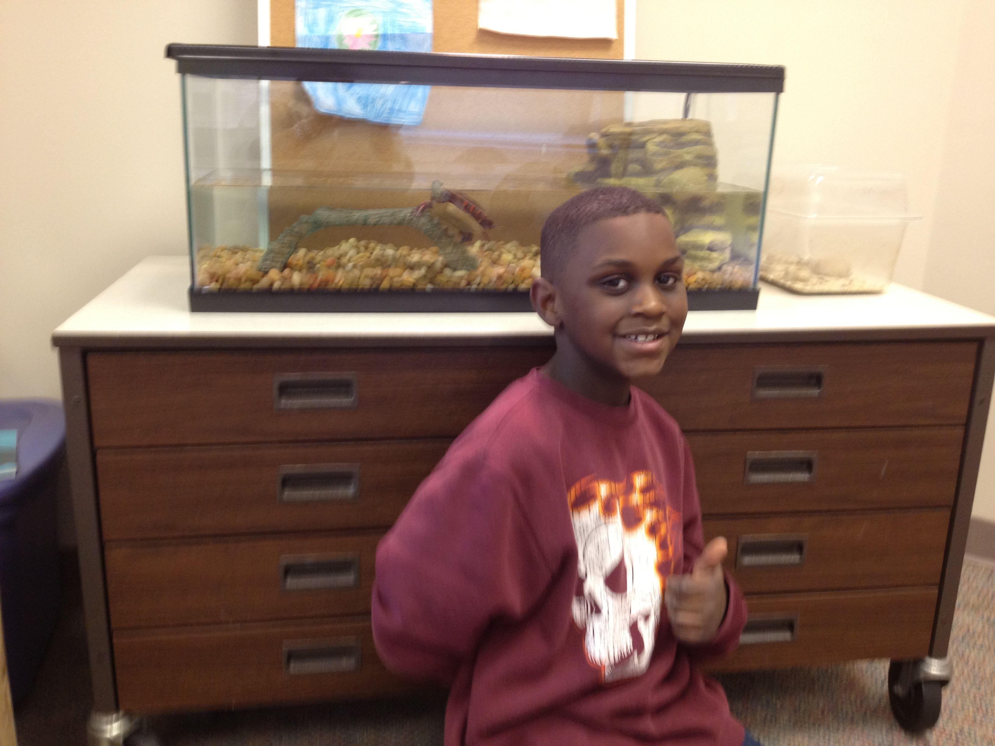 Our Classroom Pet- Franklin D Turtle