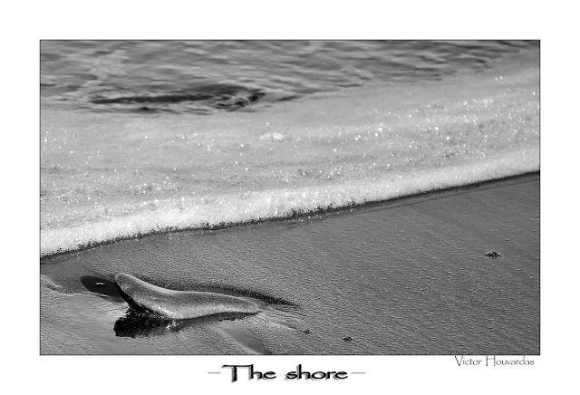 Atrapados por la imagen: THE SHORE