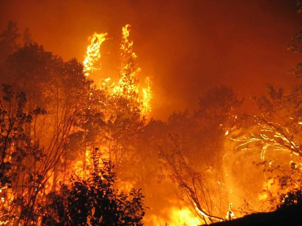 Australia: Black Saturday bushfires survivors win record ...
