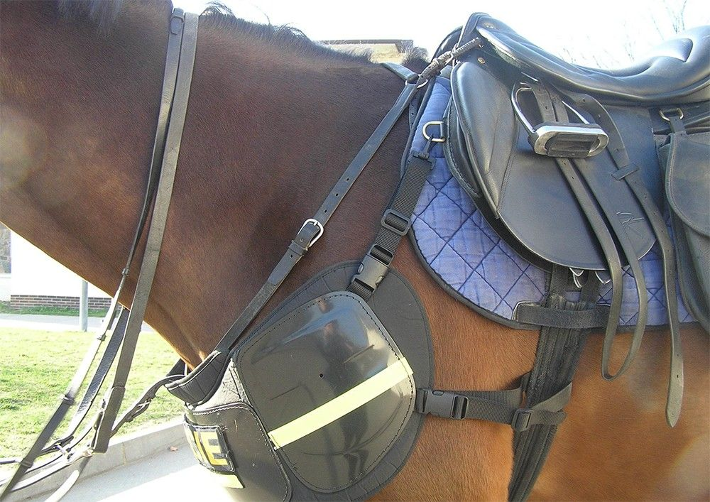 Pin On Police Horse Tack