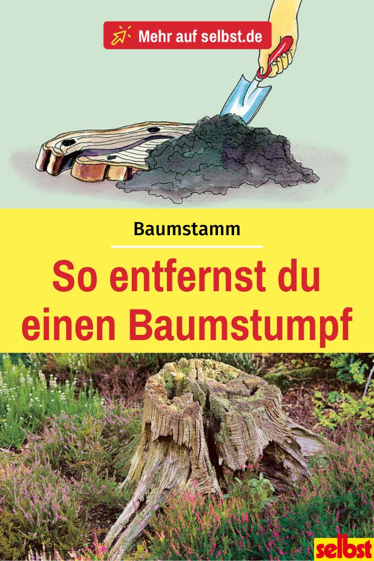Baumstumpf entfernen - Anleitung