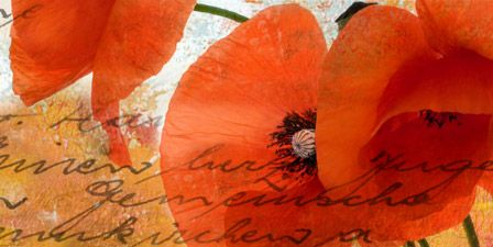Orange Wall Art Canvas Art Prints | Orange Wall Art Panoramic Photos Posters u0026 & Orange Wall Art Canvas Art Prints | Orange Wall Art Panoramic Photos ...