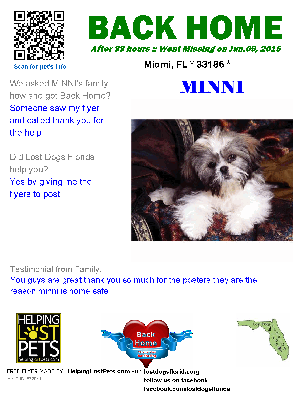 Helping Lost Pets Dog Shih Tzu Back Home With Images