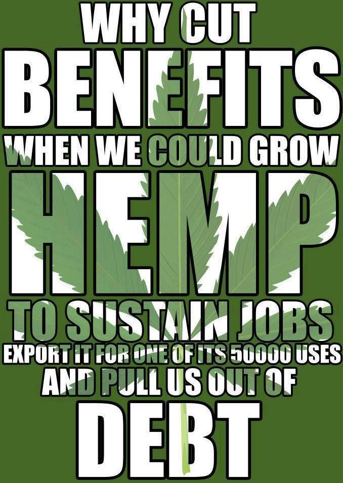 Why cut benefits when we could grow hemp to sustain jobs export it for one of its 50000 uses and pull us out of debt