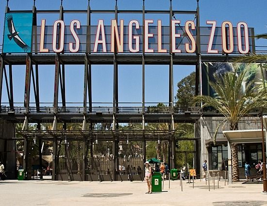 Book Your Trip In Los Angeles United States Of America Save Money By Comparing Prices On Los Angeles Holi Los Angeles Zoo Los Angeles Holidays Las Vegas Trip