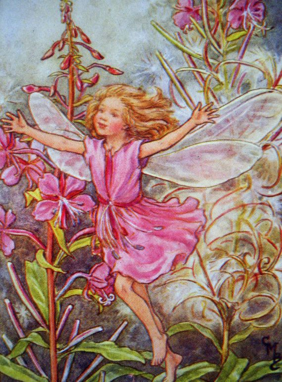 1930s Rose Bay Willow Fairy Cicely Mary Barker Print Ideal For Framing Flower Fairies Cicely Mary Barker Fairy Art