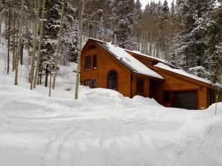 Crystal Spruce Cabin in Breckenridge: Has Washer and Dryer - TripAdvisor