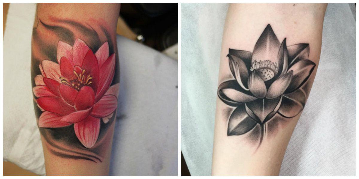 Flor De Loto Tatuaje Interesantes Ideas Para Las Chicas Modernas