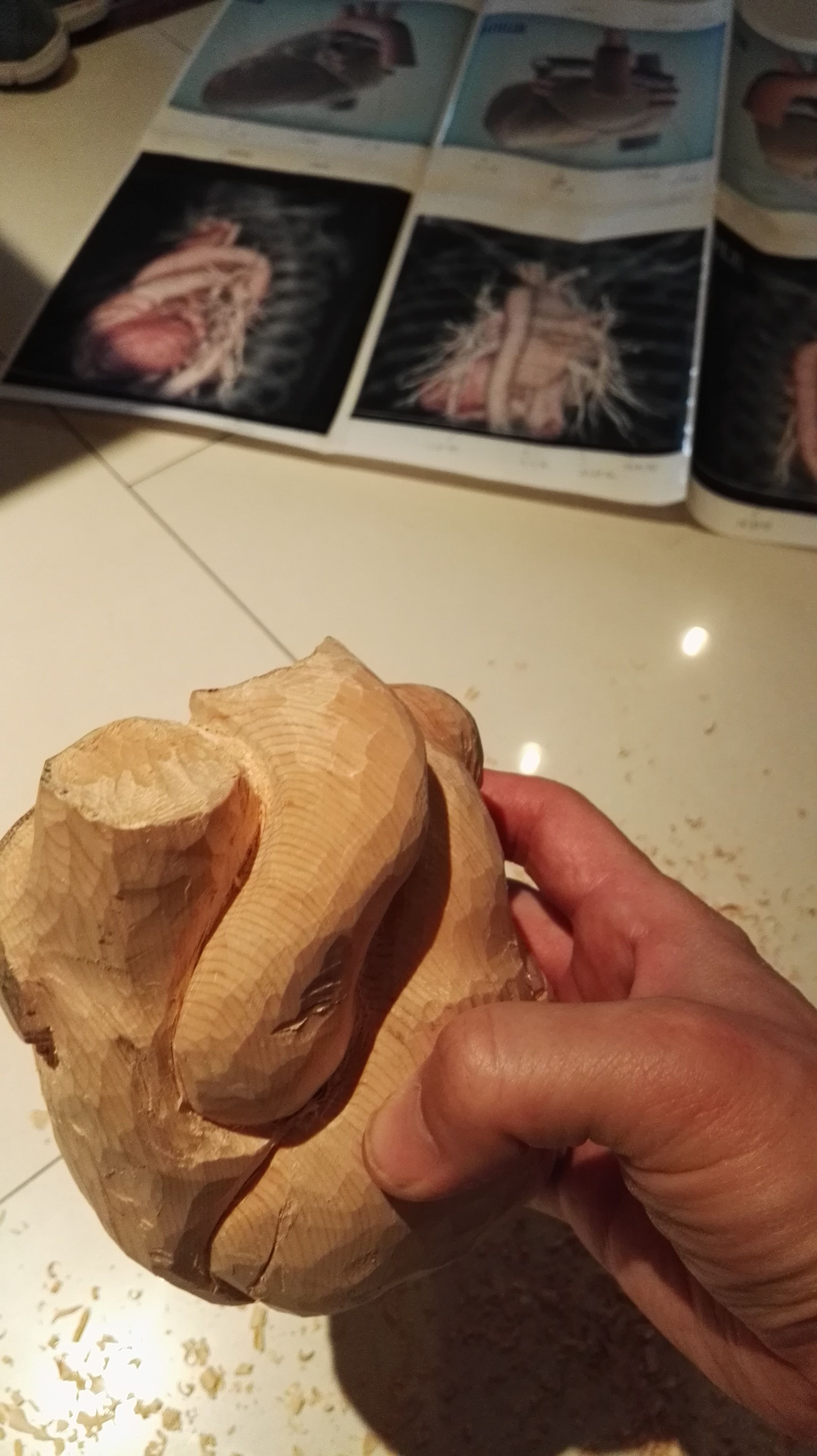 大動脈にノミの打痕がわずかに残る。形状を確認しながら少しずつ消していく。