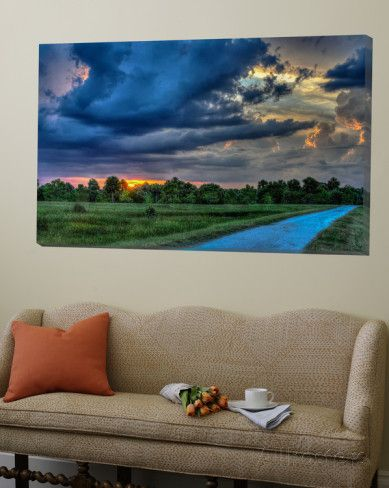 Afternoon at the Wetlands Print by Rene Griffith - AllPosters.co.uk