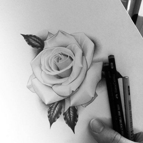 Why Do People Get Tattoos? | Rose drawing tattoo, Realistic rose tattoo, Rose tattoo design