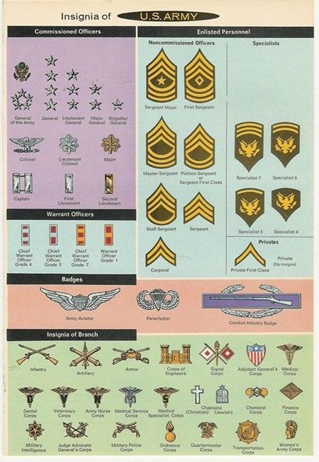 Pin By Jason Stone On Armed Forces Insignia And Rank Military Insignia Military Veterans Military Wallpaper