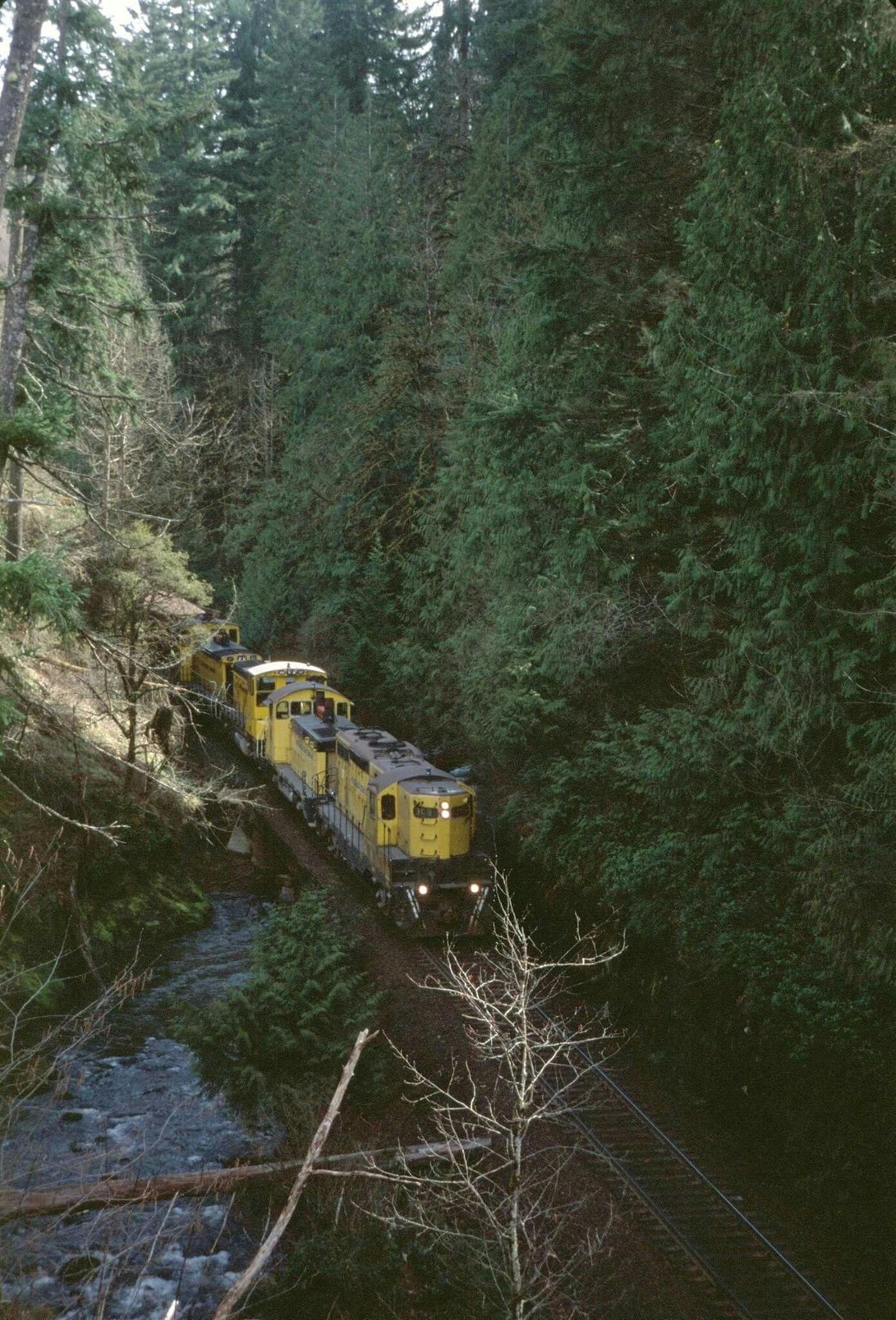 Taken during better times Weyerhaeuser's Woods train from