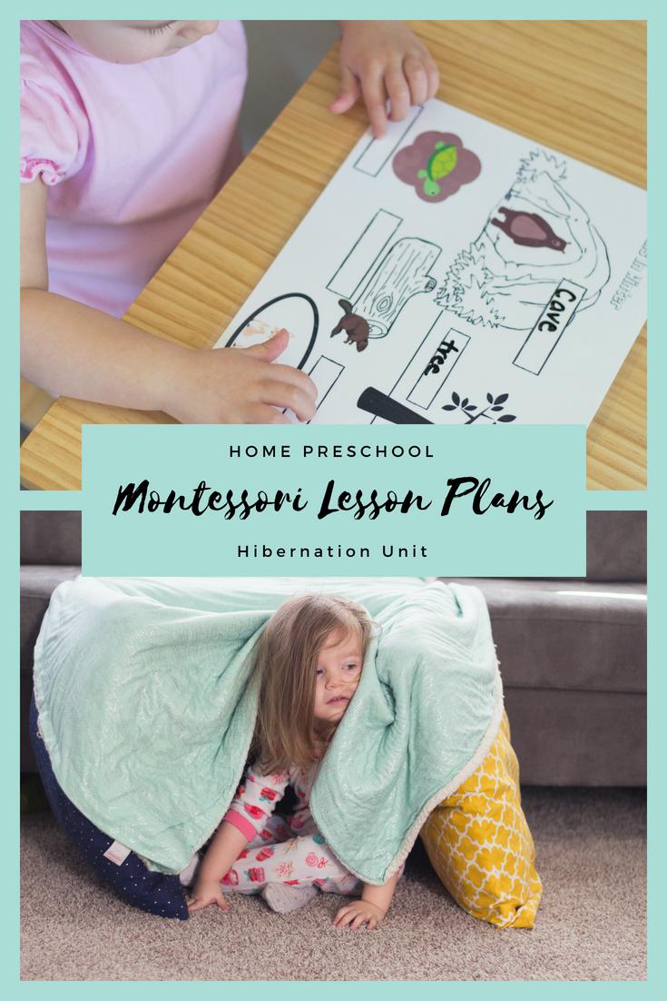 Montessori Week 3 Hibernation Printables And Activities Montessori Lessons Toddler Homeschool Fun Homeschool [ 1102 x 735 Pixel ]