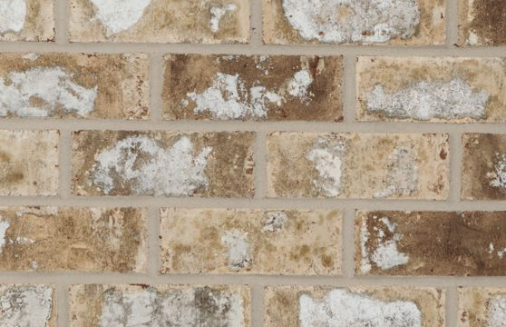 General Shale Magnolia Ridge Brick Exterior Brick Brick Architectural Features