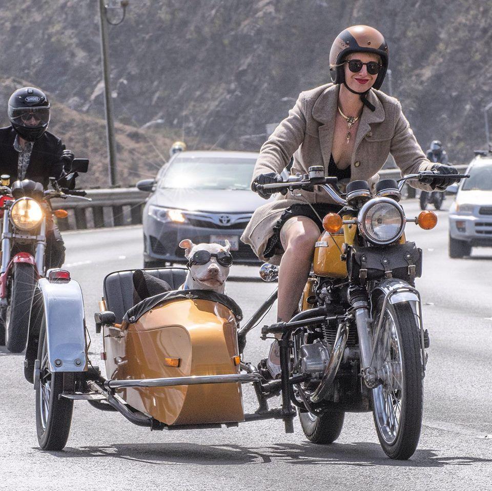 The Distinguished Gentleman's Ride | Sidecar | Pinterest ...