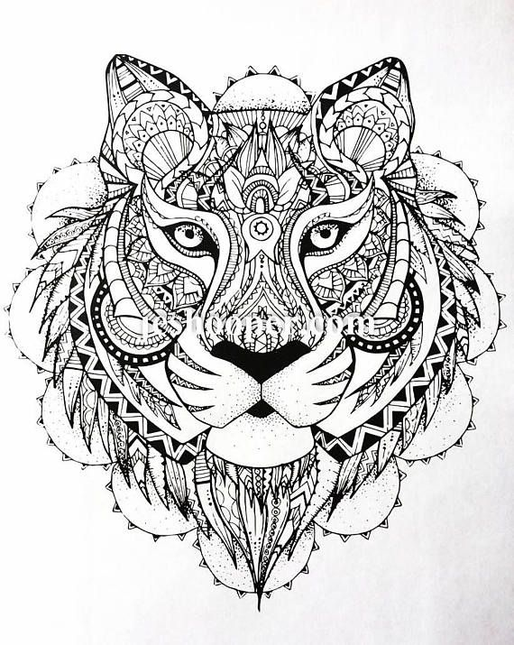 A Beautiful Tiger Image Adult Colouring Page Download Simply