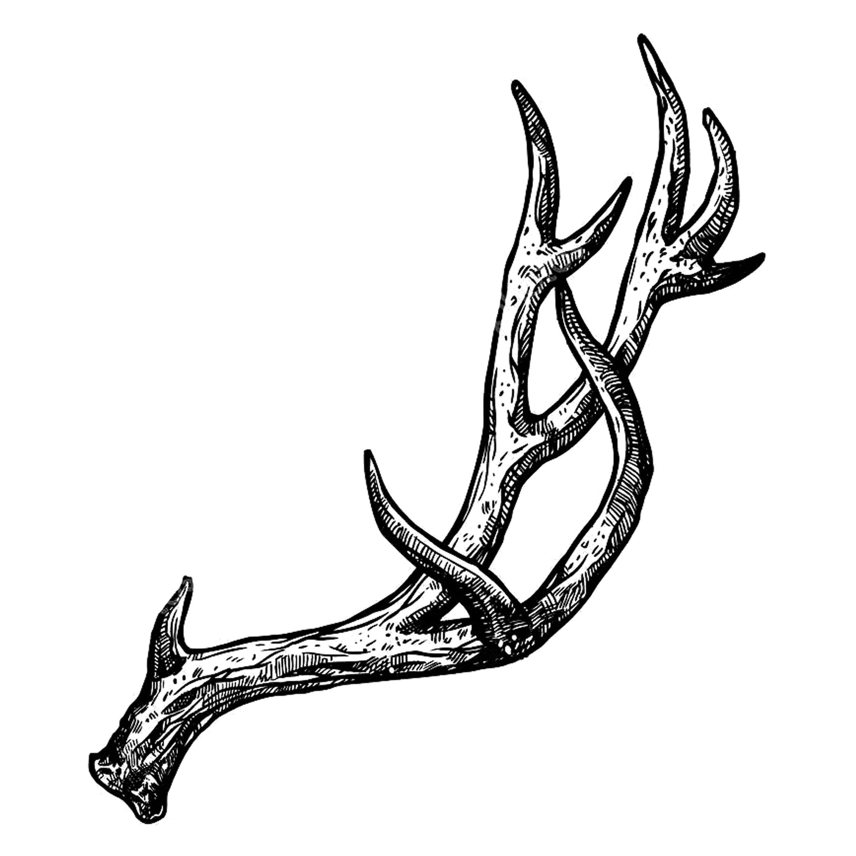оленьи рога картинки карандашом программа здесь делится