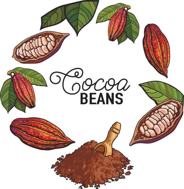 Resultado de imagen para arbol de cacao animado | logos gocholate en ...