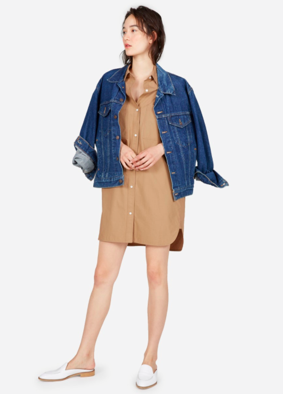 Cotton Two Pocket Shirt Dress, Everlane
