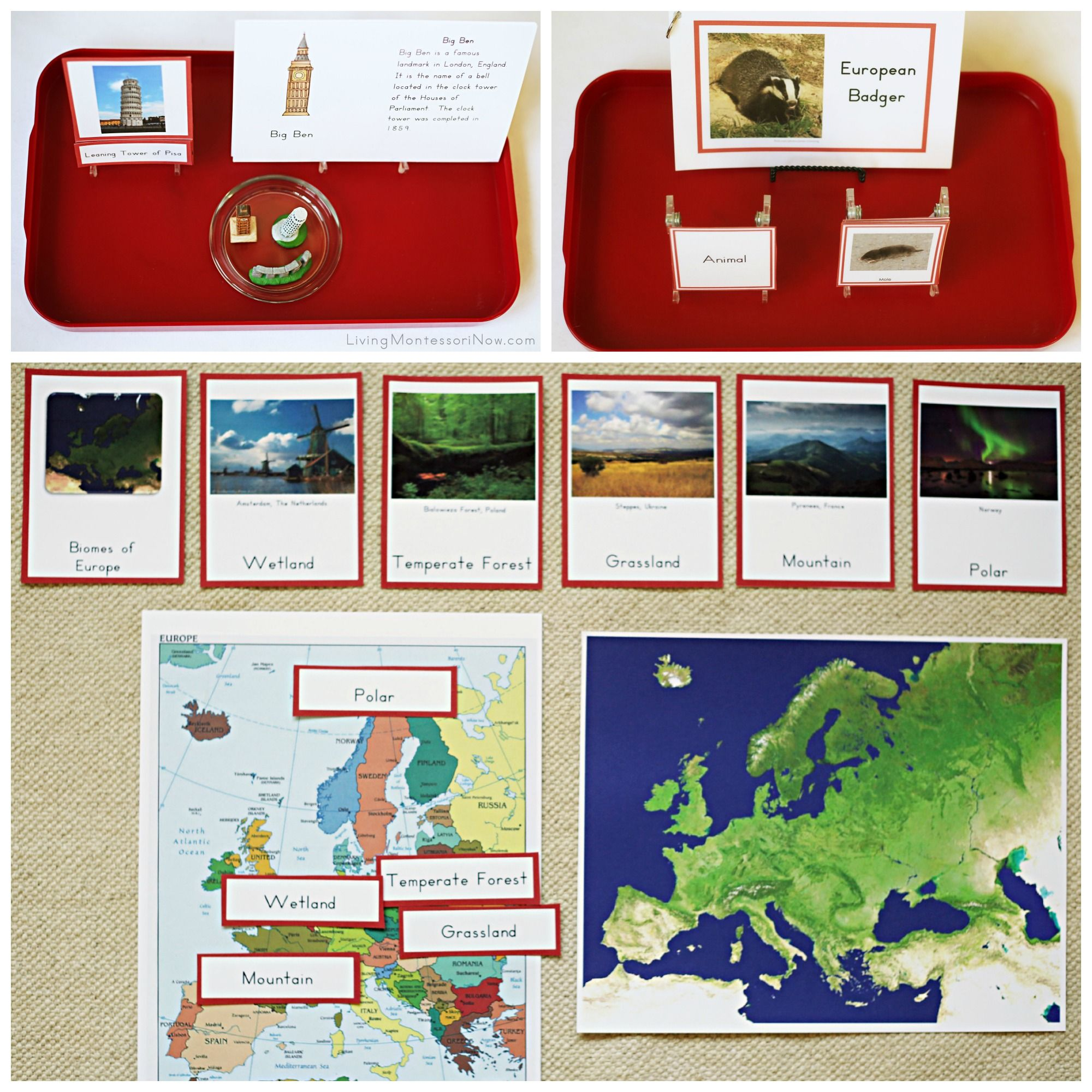 Montessori Activities For Europe And Other Continents Trillium Montessori 7 Continents