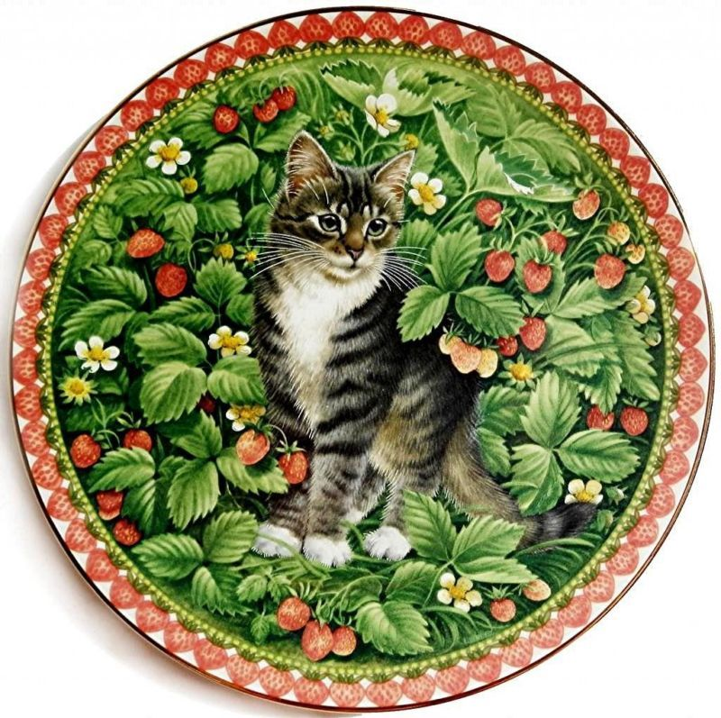Plato con diseño de gato