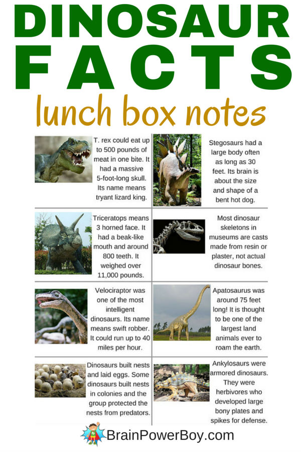 Dinosaur Facts Lunch Box Notes for Dino Fans