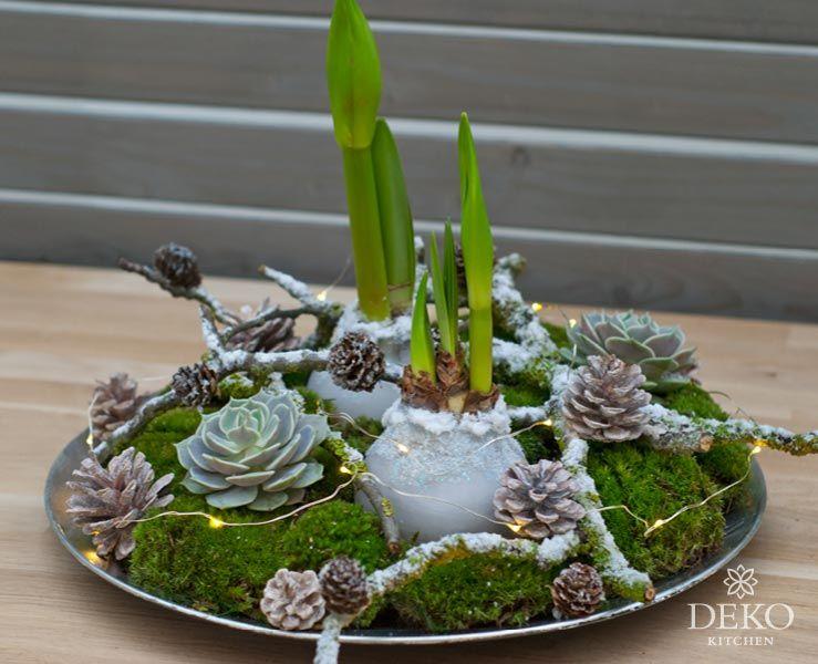 DIY: so lassen sich Amaryllis in Wachs gießen und wunderschön dekorieren