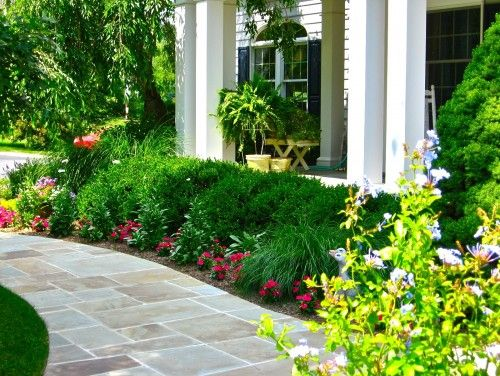 Boxwoods at the back with liriope and annuals | outdoors | Pinterest ...