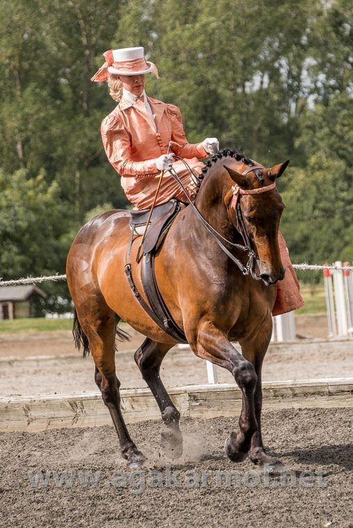 I love to ride...but side-saddle is  different  to say the least! These two  look like naturals ! Very nice.  e5afdc2e69a