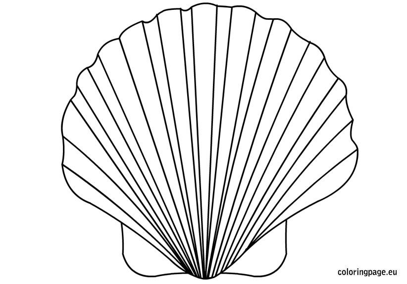 Shell Coloring Page Coloring Pages Sea Shells Shells