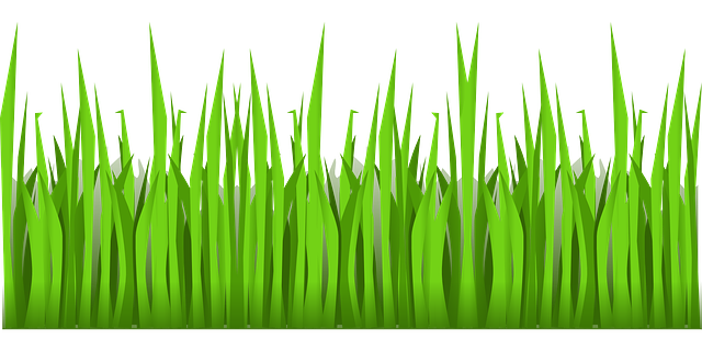 Free Image on Pixabay - Green, Grass, Growing, Nature