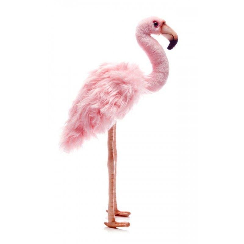 0 fenicottero in peluche flamingos pink flamingos for Fenicottero arredamento