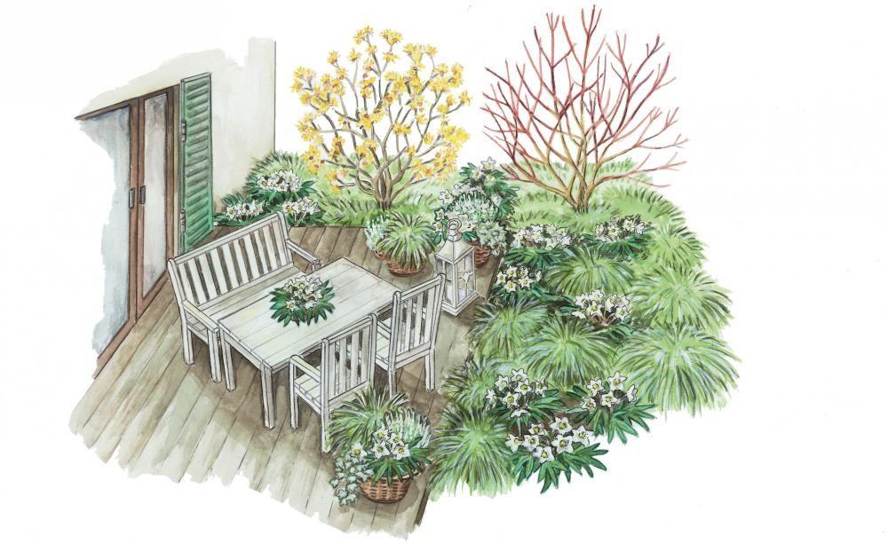 Ideen Fur Die Winterliche Terrasse Topfgarten Vorgarten Garten Gestalten