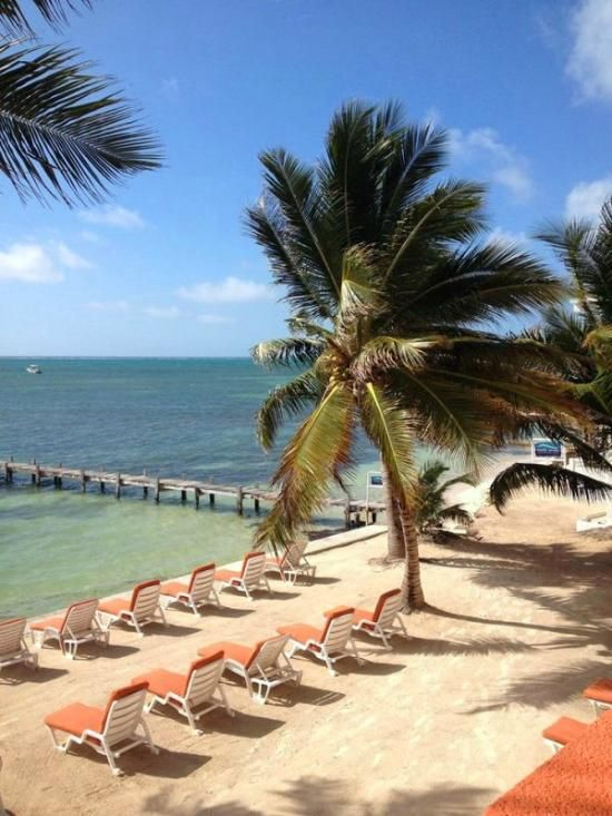 Book Banana Beach Resort Belize On Tripadvisor See 368 Traveller Reviews 577 Candid