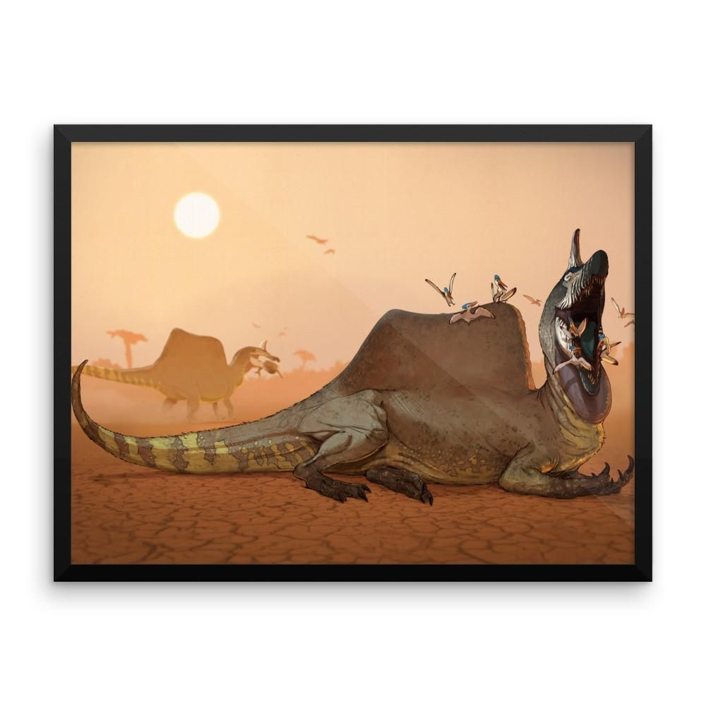 Spinosaurus, Spinosaurus