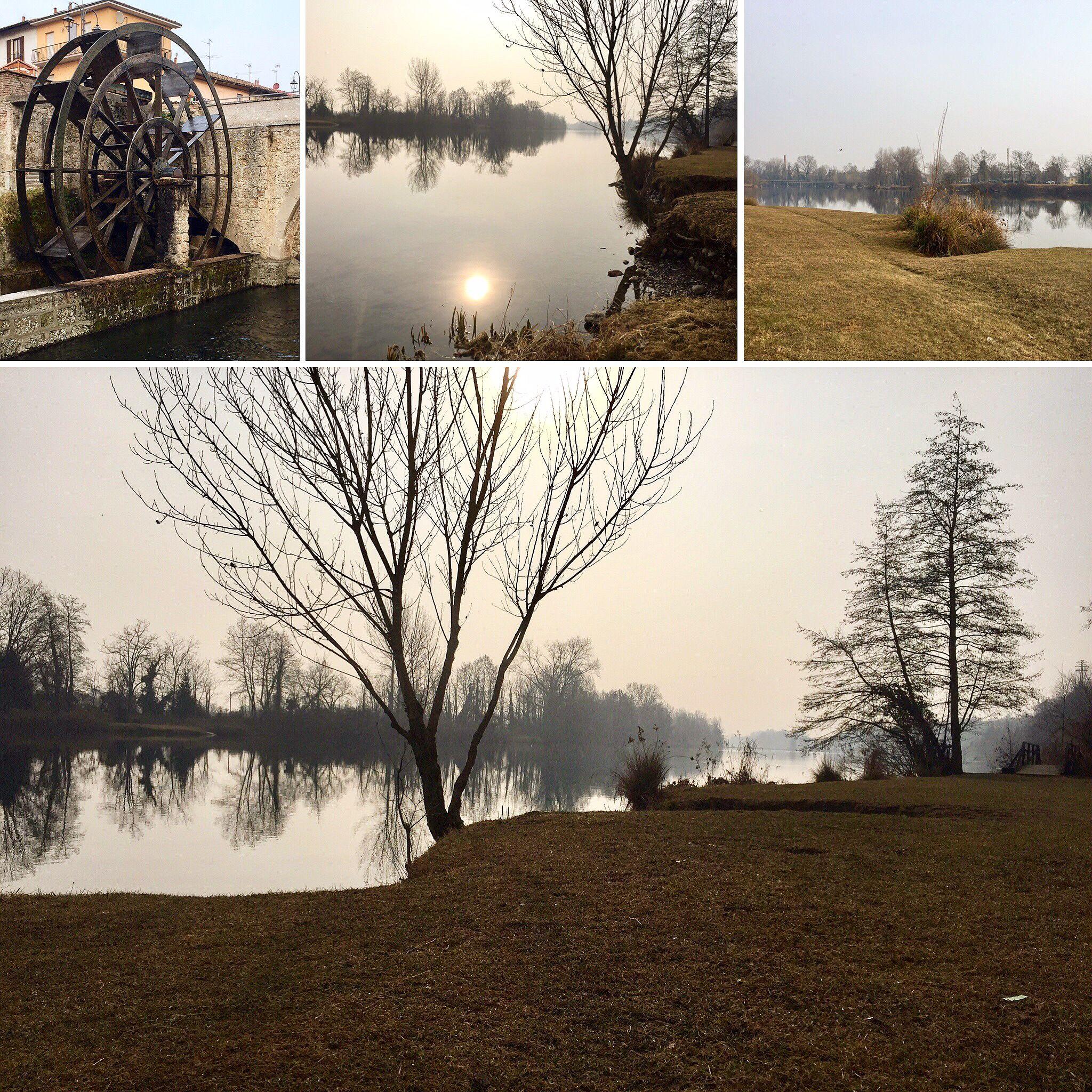 During a Saturday morning long-distance run along the Adda river. ☀️🌾