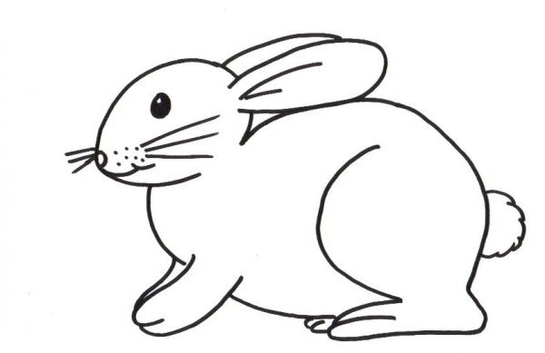 kleurplaten over konijnen