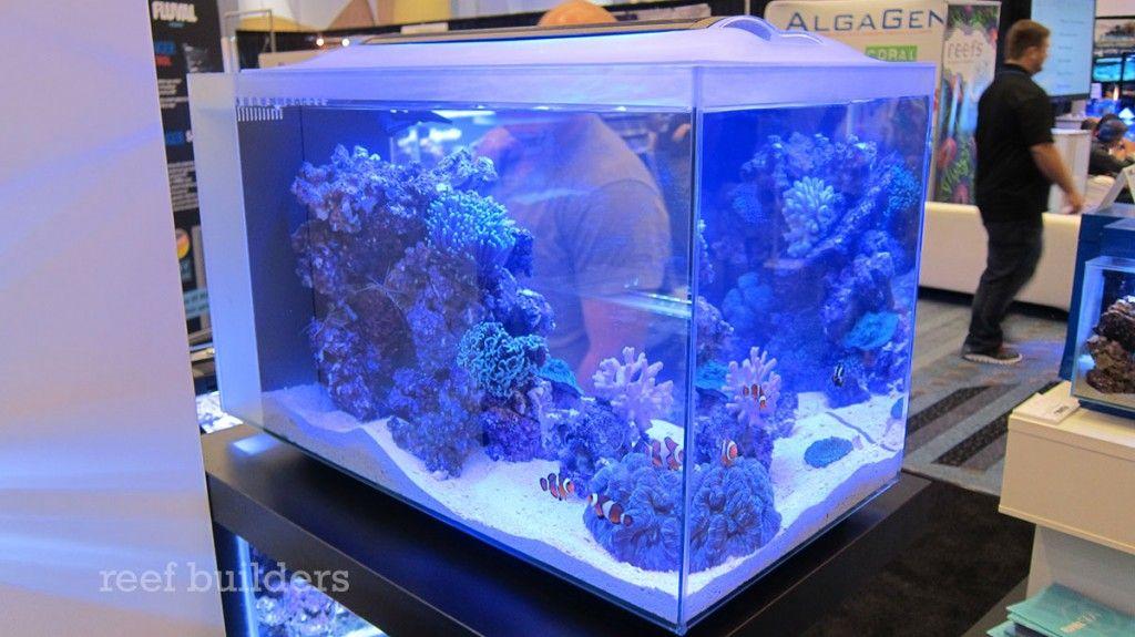 Fluval Sea Evo 12 Nano Tank Will Rock 199 With Images Nano Tank Saltwater Aquarium Nano Reef Tank