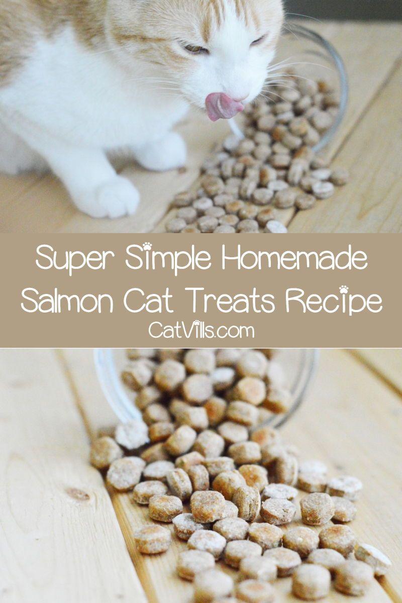 Homemade Salmon Cat Treats Recipe Catvills In 2020 Cat Treats Homemade Salmon Cat Diy Cat Treats