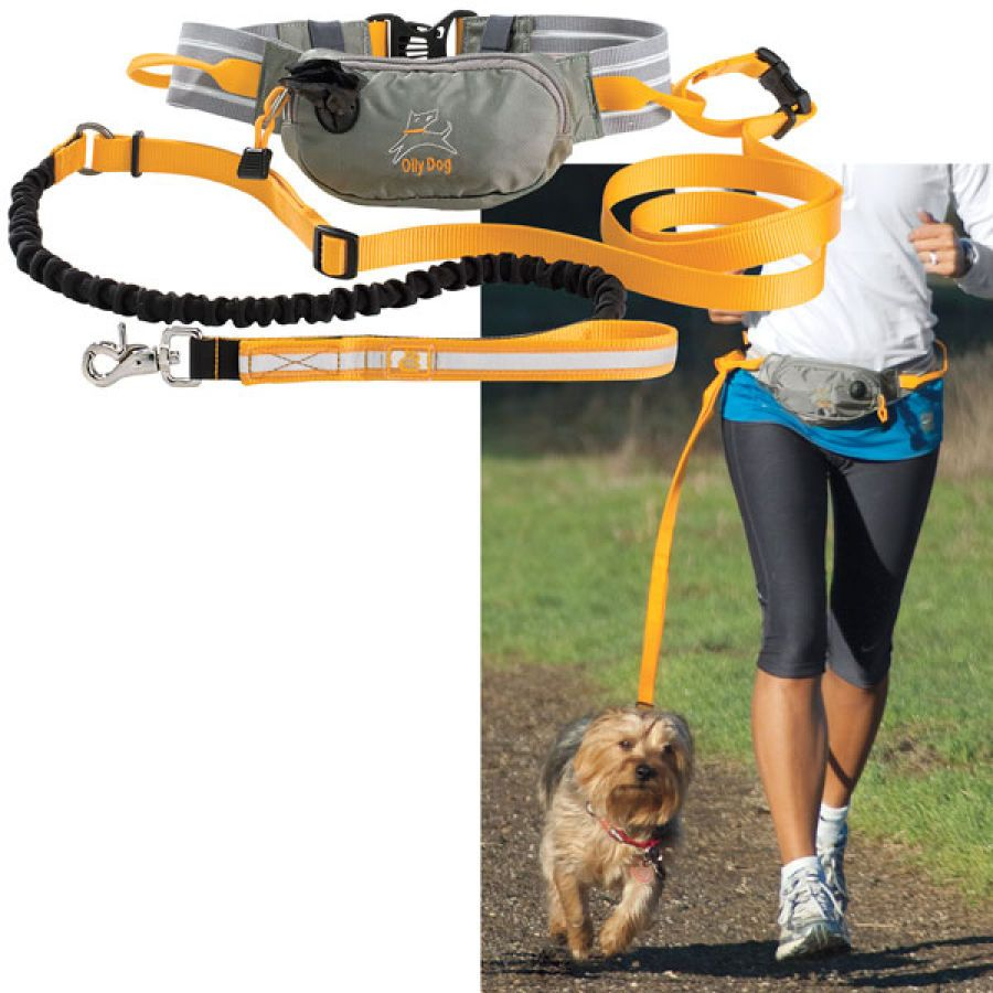 I D Like To Think This Hands Free Leash Would Be A Good Thing To