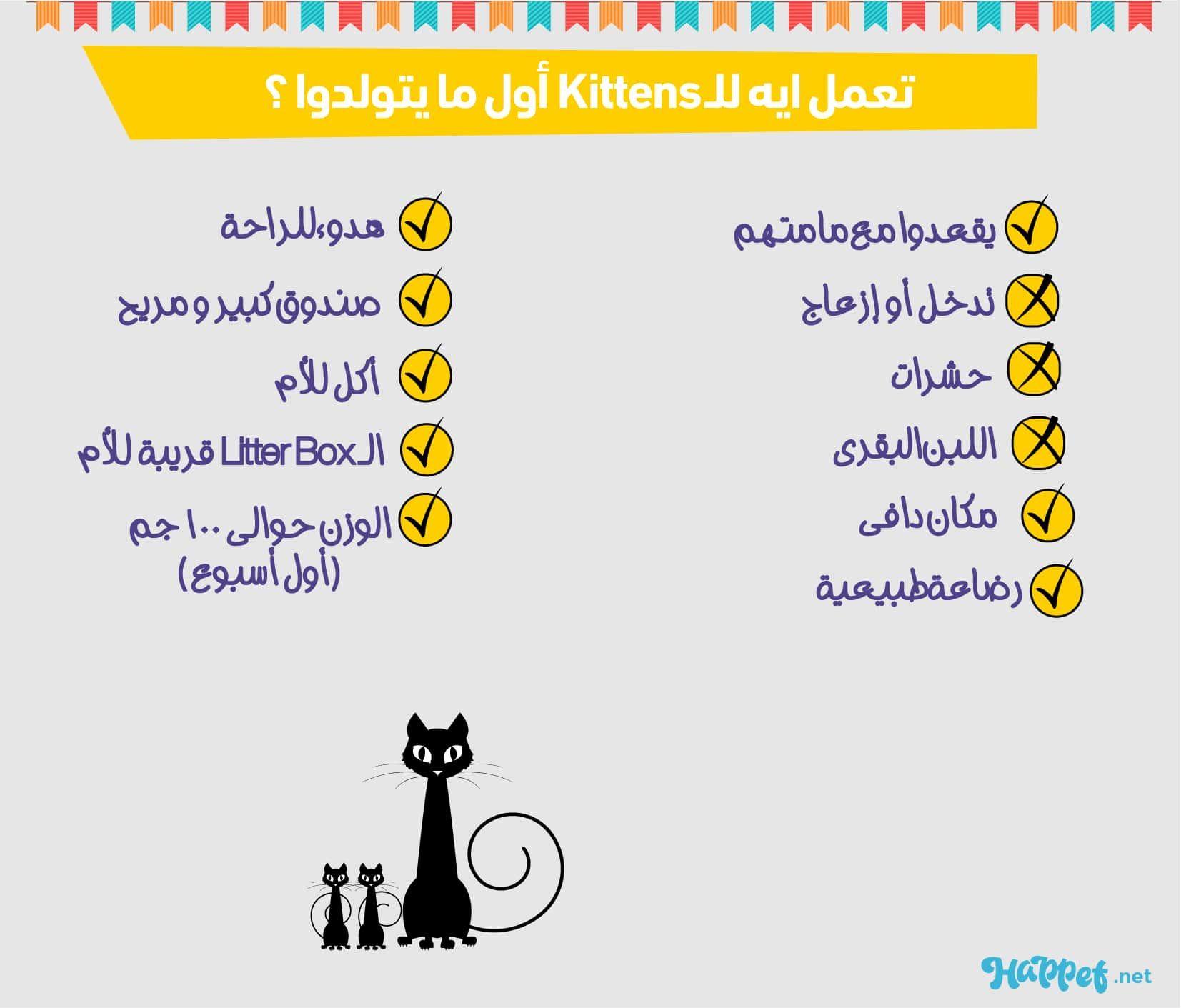 تعمل ايه للقطط أول ما يتولدوا Your Pet Checklist Pets