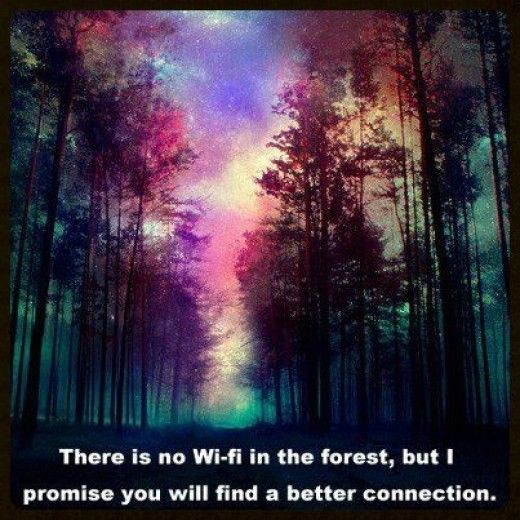 Art, Magical Forest, Nature