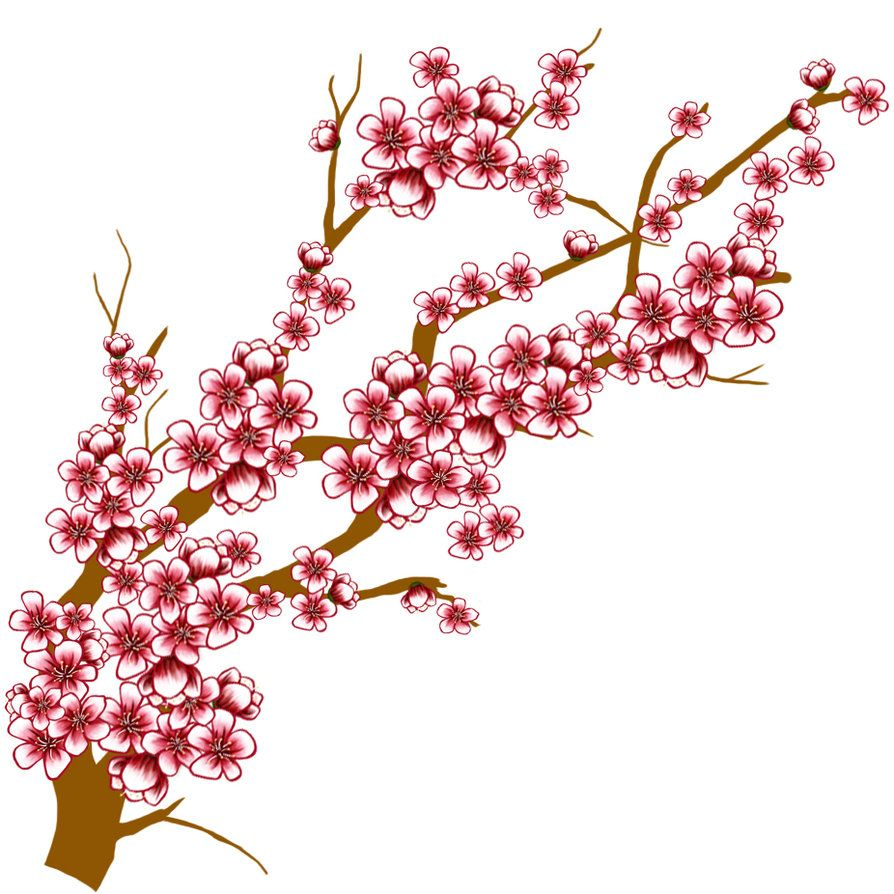 sakura flower clip art bahar dal pinterest rh pinterest com cherry blossom clip art borders cherry blossom clipart black and white