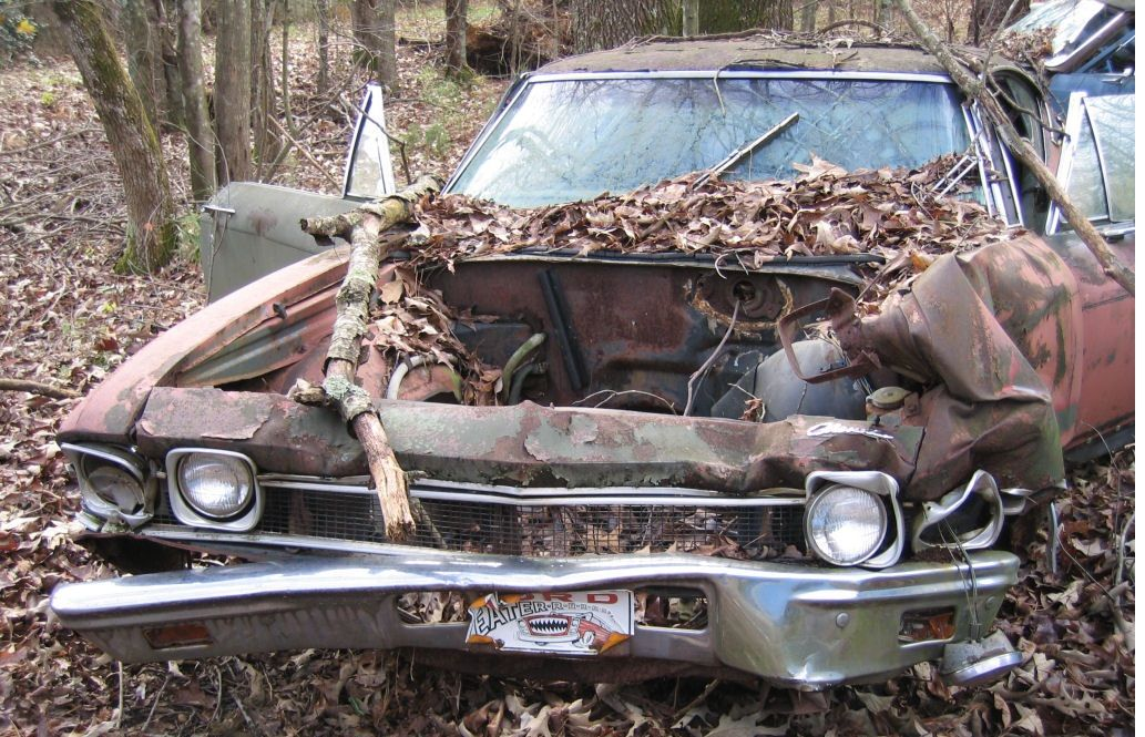 1968 Chevelle SS 396 I\'d buy that for a dollar! | I\'d buy that for a ...