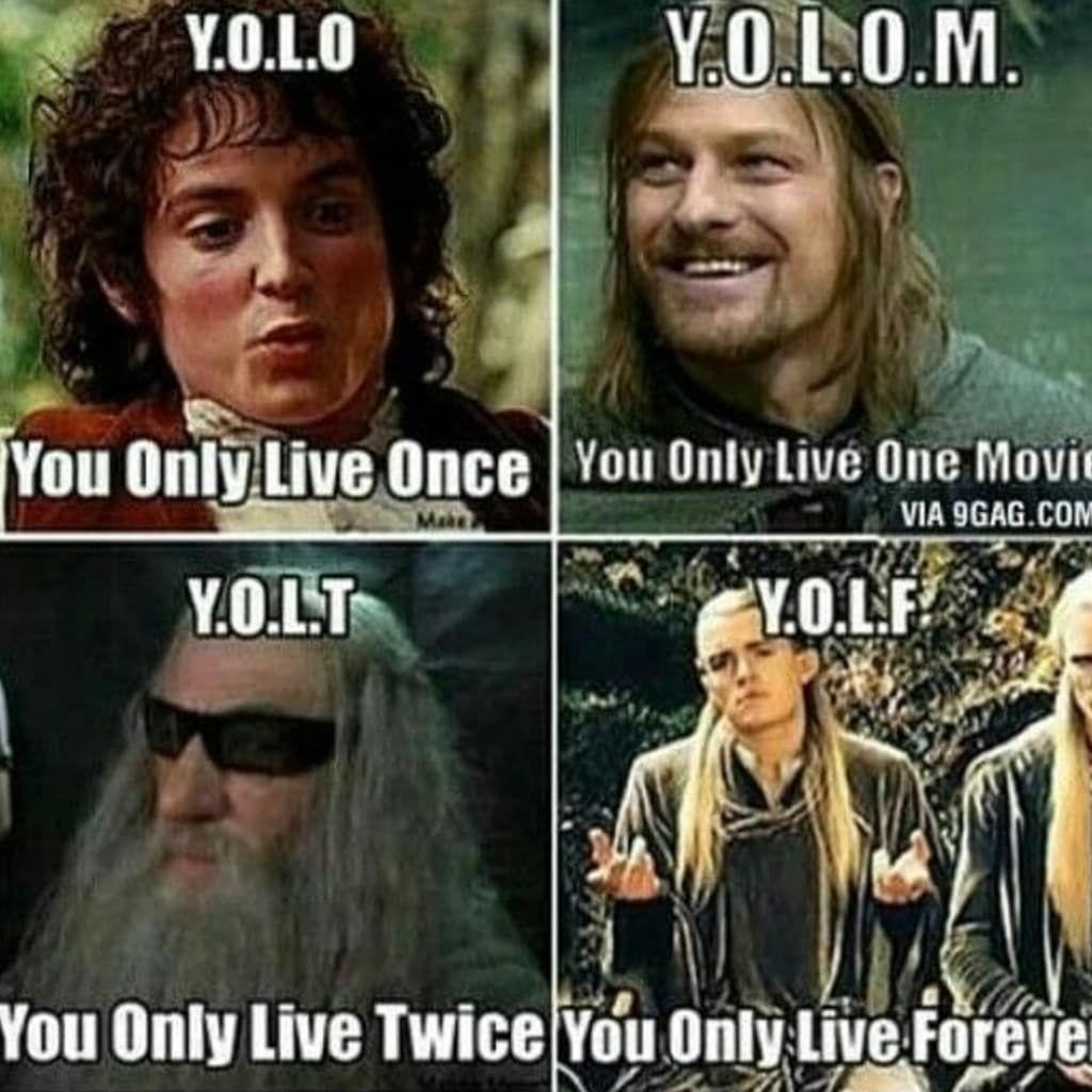 25 Hobbit Memes Elves With Images The Hobbit