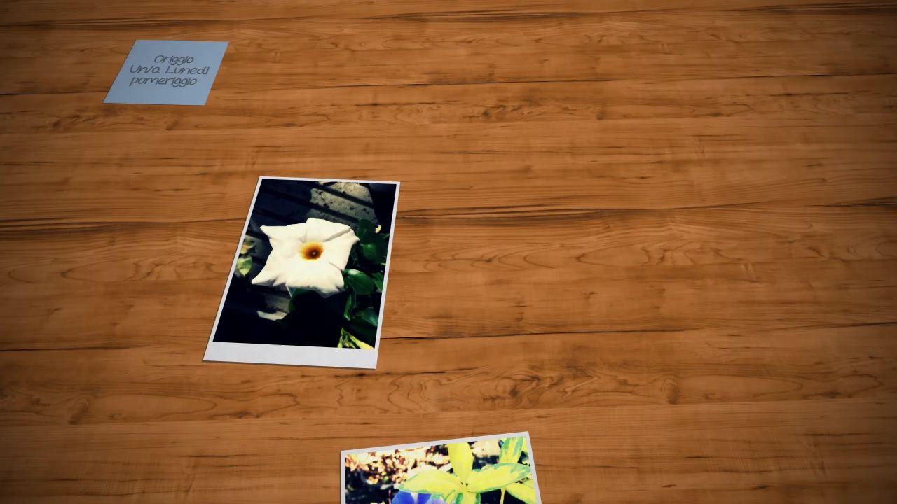 Video fiori