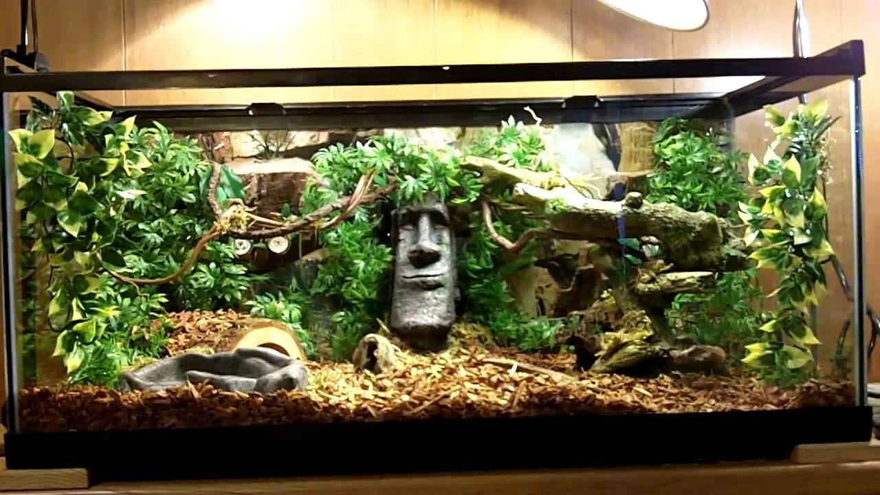 I M Now Inspired To Make An Indiana Jones Themed Terrarium