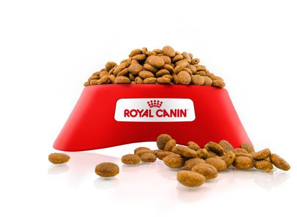 Campione Gratuito Crocchette per cani o gatti offerti da Royal Canin