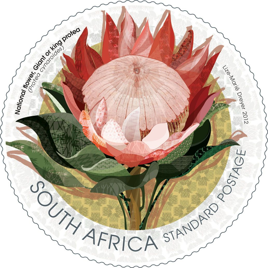 South Africa 2012 National Flower Giant Or King Protea Stamp Designed By Lize Marie Dreyer South African Flowers African Symbols National Symbols
